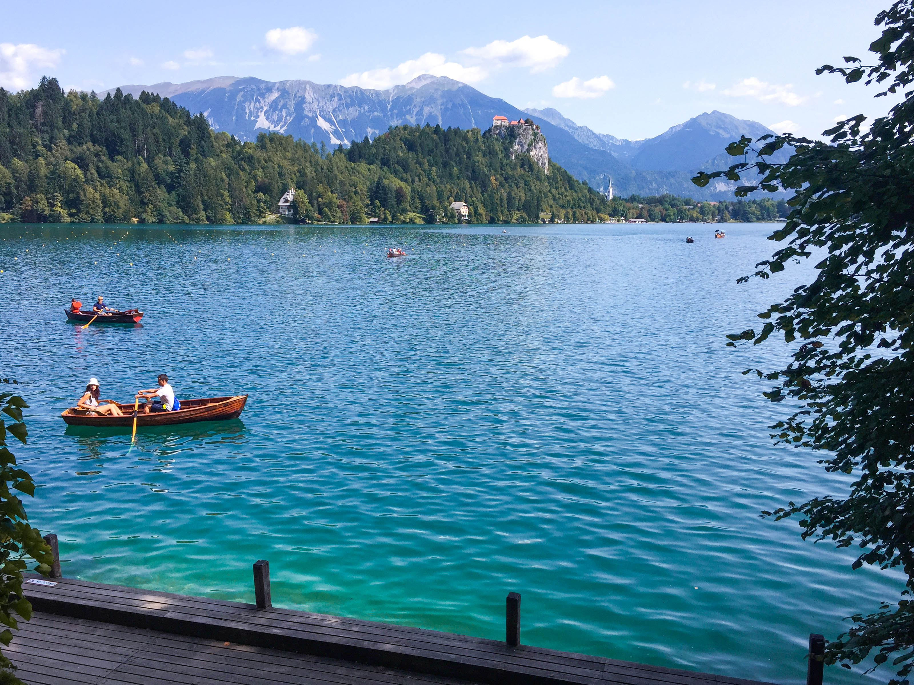 View from Bled Island