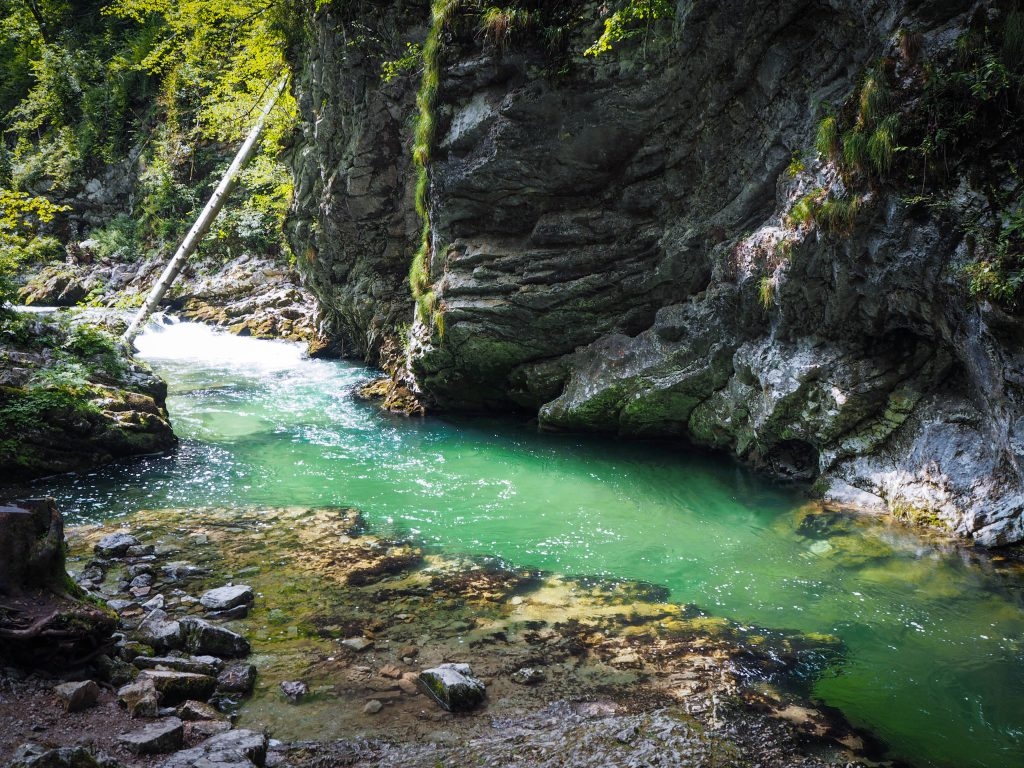 The Vintgar Gorge