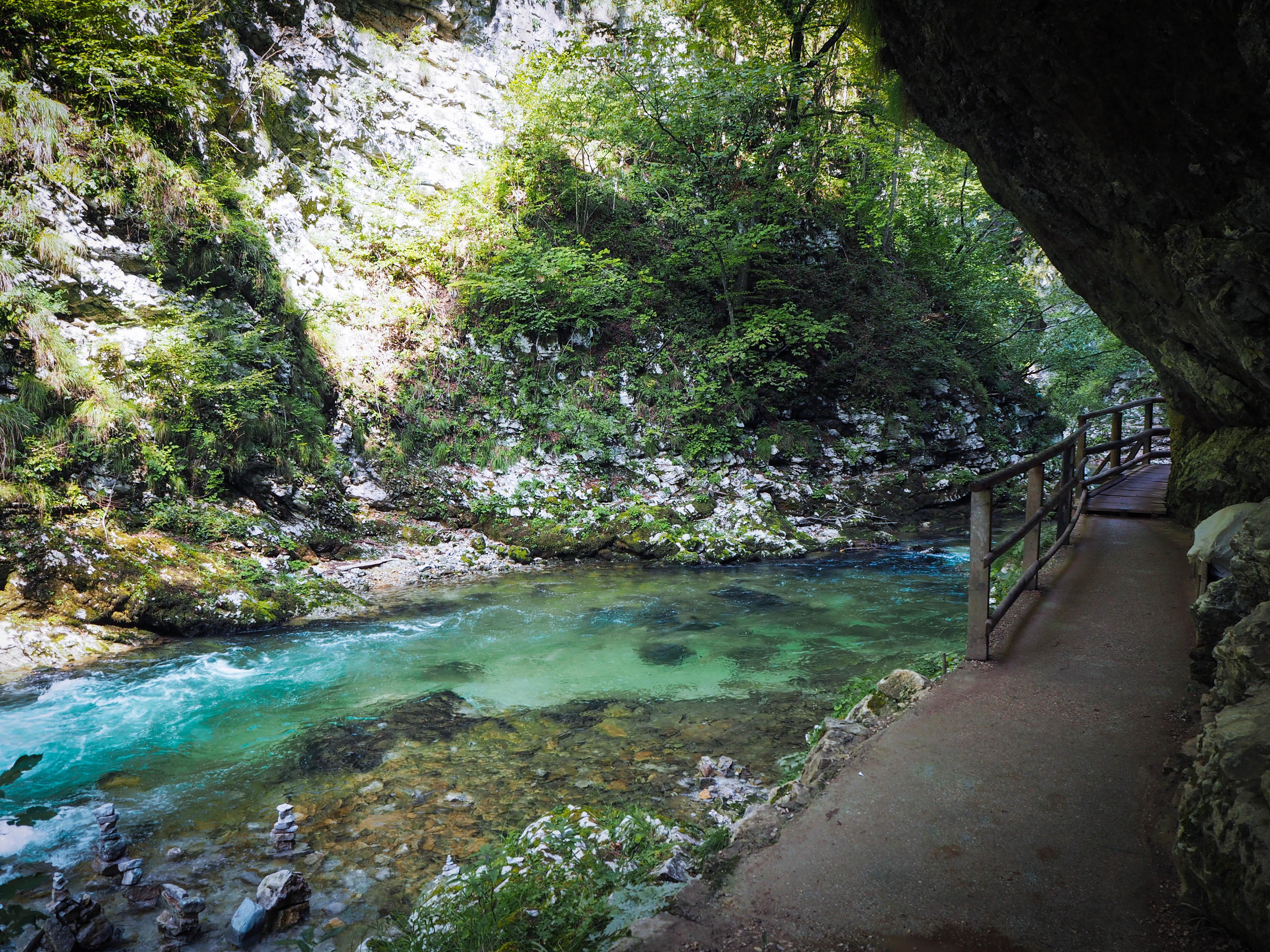 The Vintgar Gorge