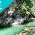 Visiting the Vintgar Gorge, Slovenia: A Natural Wonder You Must Explore