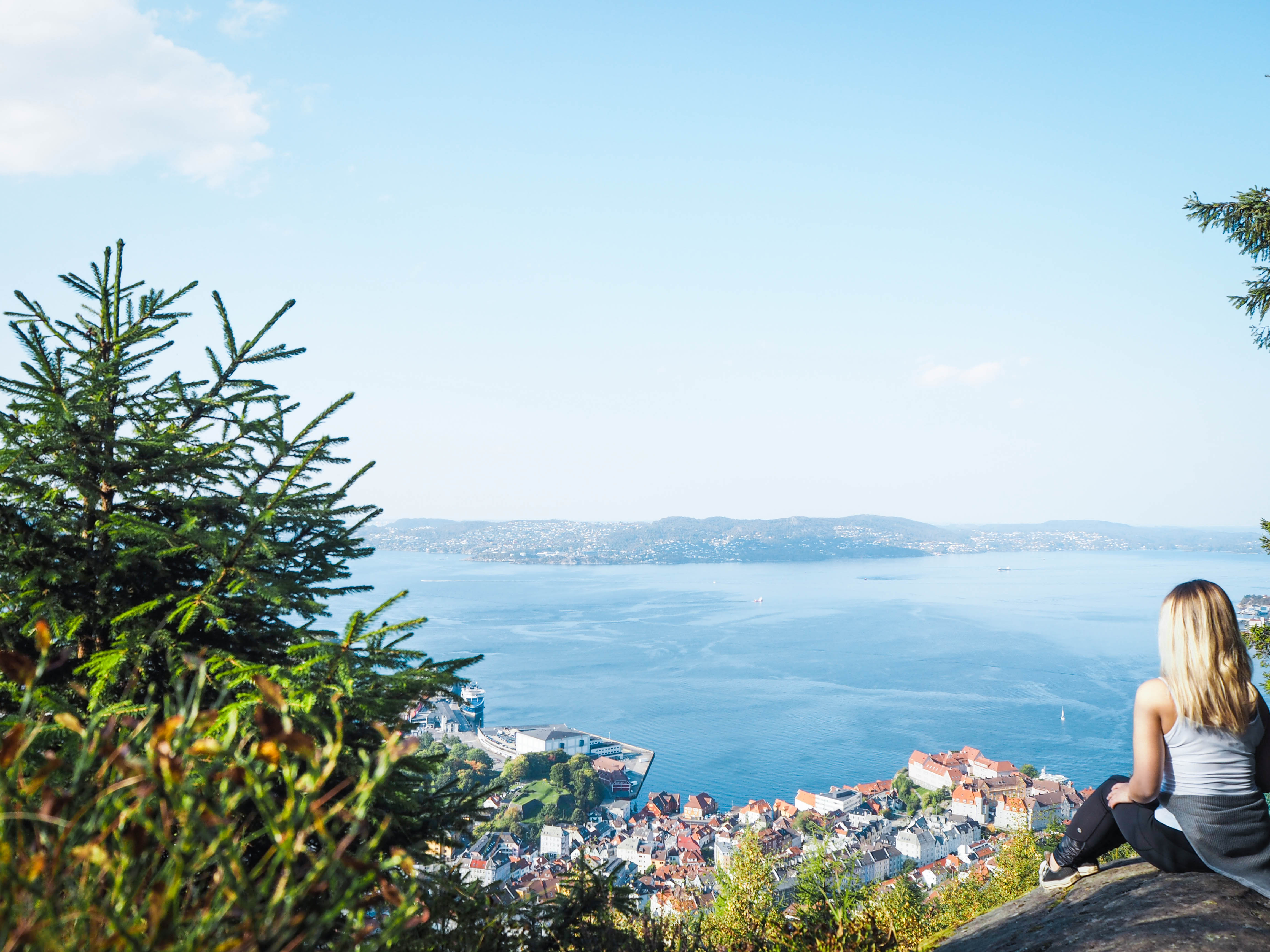 View of Bergen, Norway from Mt. Fløyen