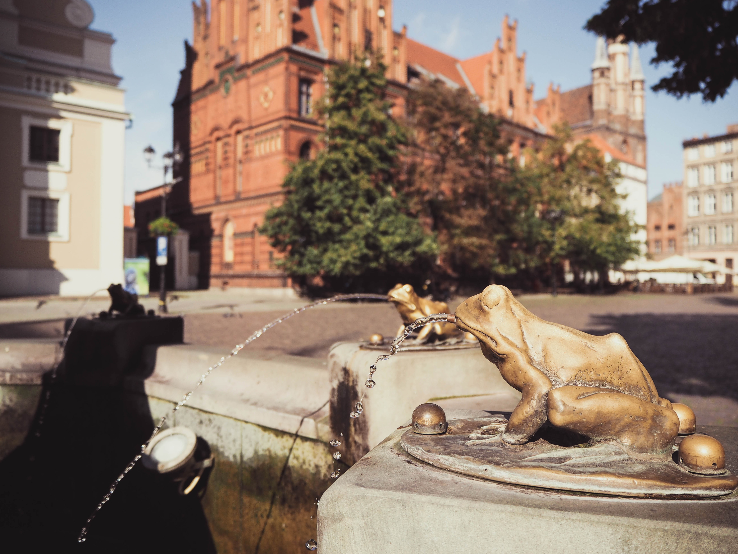 The Frog Fountain, Torun Poland